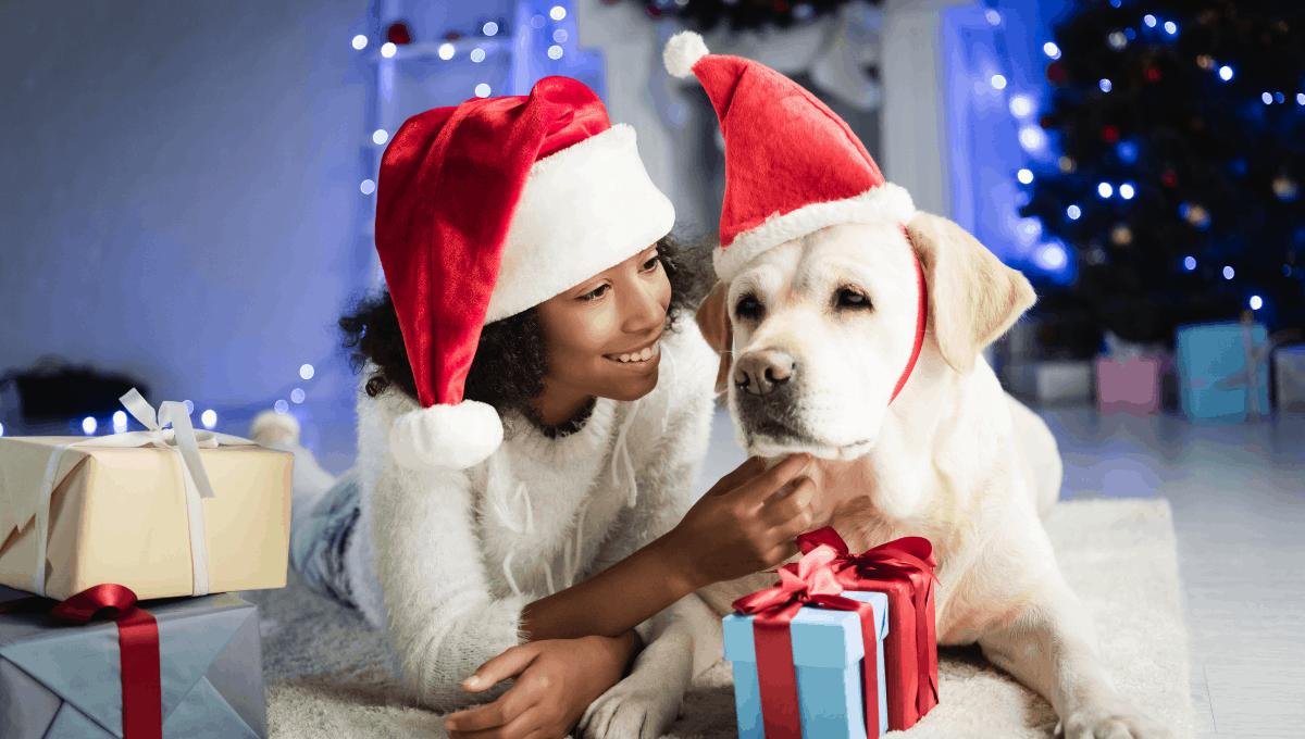 Where to Get Pet Santa Photos in Melbourne